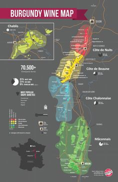 Burgundy Regional Wine Map