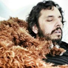 Leo ♥s lounging.  Leo ♥s disco naps. Leo ♥s Brooklyn.