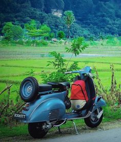 Vespa in the countryside