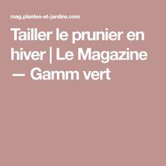 Tailler le prunier en hiver | Le Magazine — Gamm vert