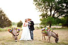 old glory ranch donkeys