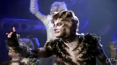 A place one Jellicle only will see? Well, it's gonna have to be me, seeing as I do all the hard graft! Michael Gruber, Cats That Dont Shed, Jellicle Cats, Hard Graft, Cats Musical, Movie Theater, Theatre, Third Eye, It Cast