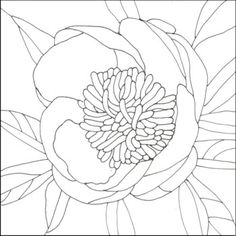 Making a Stained Glass Pattern for a Flower
