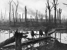 The Battle of Passchendaele during World War One. Soldiers of an Australian Division field artillery brigade on a duckboard track passing through Chateau Wood, near Hooge in the Ypres salient, World War One, First World, Battle Of Passchendaele, Battle Of Ypres, Vacation Places, Military History, Ww1 History, Modern History, Family History