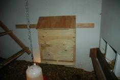 Feeder installed in the chicken coop