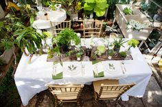 Vintage Botanical Garden Wedding Inspiration (Chris Wojdak Photography) #wedding #gardenwedding #vintagewedding #botanicalgarden #greenhousewedding