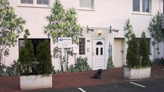 Die Außenfassade eines Gebäudes in einem tristen Innenhof mit großer Parkfläche, begrünten wir mit einer Illusionsmalerei von Birken, Gräsern und Wildblumen. Der Untergrund wurde im Vorfeld in gebrochenem Weiß grundiert und die Malerei mit hochwertigen Künstlerfarben direkt auf die Fassade gebracht.