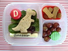 Dinosaur T-Rex Lunch Box. Alphabet cutters and mini stripe container available in NZ from www.thelunchboxqueen.co.nz