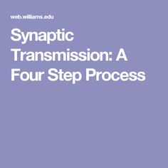 Synaptic Transmission: A Four Step Process