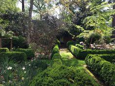 Wing Haven Garden And Bird Sanctuary 248 Ridgewood Ave, Charlotte, NC 28209  | Asheville, NC | Pinterest | Charlotte Nc, Charlotte And Bird