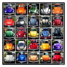 Volkswagen beetle typology. Photography by David Kessler.