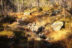 Hovden, Norway