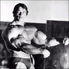 Arnold Schwarzenegger - Massive biceps