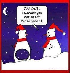 33 Best Christmas humour images | Jokes, Xmas, Christmas fun