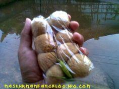Tahu Terminal Purworejo Cucumber, Nostalgia, Food, Essen, Meals, Yemek, Zucchini, Eten