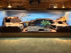 Thank you for all the inspiration! This setup is for 2 of my uromastyx, complete with four hides, two dig/lay boxes( top left(actually a styrofoam cooler)