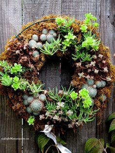 Unexpected Garden Accents ~ Succulent Wreath hanging on garden fence