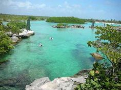 Go snorkel! Yalku Lagoon is amazing. Lies just behind the beautiful beaches of Half Moon Bay in the Riviera.