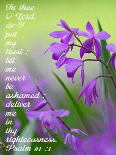 Psalm 31:1 KJV