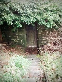 Doorway to the 'Secret Garden' at Christ Church Welshpool by Hannah Irena Wilson Garden S, Doorway, Christ, Plants, Entrance, Entryway, Plant, Welcome Door, Planets