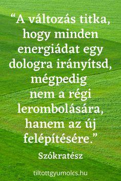 myopia edzés)