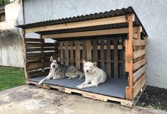 Look at the eye-catching pallet dog house idea that is all finished out with the. Look at the eye-catching pallet dog house idea that is all finished out with the rustic pallet wood Goat Shelter, Shelter Dogs, Pallet Dog House, Dog House From Pallets, Doggy House, Wood Dog House, Goat House, Pallet Dog Beds, Build A Dog House