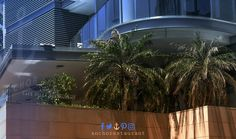 Perfect spot and hangout to relax in the shade under our  #palmtrees with a nice breeze on  hot summer days ⚓ #ANCHORCafe & Restaurant - Taste the difference! #alfresco #summersydney #anchorrestaurant #anchorestaurant #milsonspoint #kirribilli #lavenderbay #northsydney #nthsyd #lowernorthshore #neutralbay #mosman #crowsnest #sydneyrestaurants #sydneycafes #sydneyrestaurant #sydneycafe #sydneylife #sydneylocal #sydneyeats #sydneydining #sydneypizza #sydneypizzeria #sydneyfood #sydneyfoods