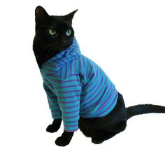 Cat Hoodie Cat Clothes Teal and Purple por RockinDogsCoolCats