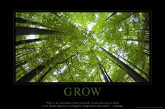 Grow Poster at AllPosters.com