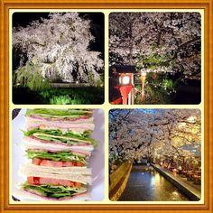 今週満開になった京都の夜桜です。 サンドウィッチはお昼に作って食べました(笑) マーガリンを使わずゴルゴンゾーラチーズディップを塗っているのがポイントです! - 108件のもぐもぐ - サンドウィッチと京都の夜桜 by jazzwine