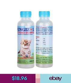 Avoderm Natural Oatmeal Formula Dog Cat Shampoo