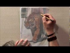 Drawing & Painting Wild Animals with Vic Bearcroft One - Part One