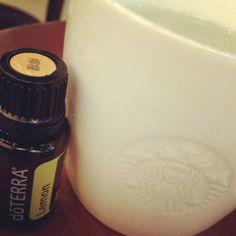 早晨之溫馨小提示:  由於精油是膠溶性的,切勿使用膠樽同杯飲用啊!