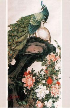 Chinese Artist Bai Ming Flower & Bird Painting Postcard - Peacock,Peony Flowers