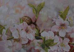 flor de almendro dibujo - Buscar con Google