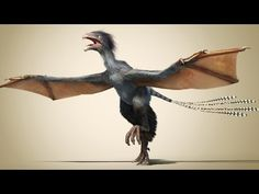 A new dinosaur: Flying without feathers Birds evolved from dinosaurs – but it wasn't a smooth transition. Plenty of creatures tried different ways to get into the air – like this newly discovered dinosaur species, Yi qi, unearthed in China. This pigeon-sized creature had elongated fingers that held a membrane wing, more like a bat than a bird. In this Nature Video, we look at what makes this fossil so special, and consider what this dinosau