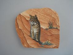 Bobcat hand painted on sandstone by Greta Schneider