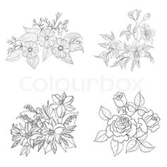 Image of 'Cultivated flowers, outline, set' on Colourbox