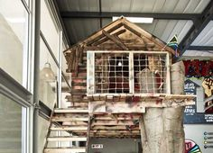 Missing Link Builds an Awesome Indoor Treehouse Inside Their New South African Office        Read more: Missing Link Builds an Awesome Indoor Treehouse Inside Their New South African Office | Inhabitat - Sustainable Design Innovation, Eco Architecture, Green Building