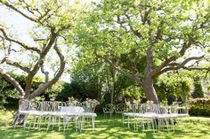 Bruiloften   De Theeplaats, Overnachten in de Brabantse Biesbosch
