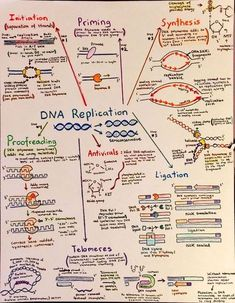 biology notes Introductory Biochemistry F - biology Study Biology, Biology Lessons, Teaching Biology, Science Biology, Science Lessons, Biology Review, Biology Memes, Life Science, Forensic Science