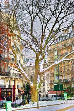 Square René-Viviani - Montebello, Paris Love the atmosphere Beautiful Paris, I Love Paris, Most Beautiful Cities, Paris Snow, Paris Winter, Paris Travel, France Travel, Image Paris, Monuments