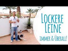 Lockere Leine - Immer und überall! - YouTube