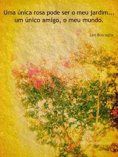 """""""Uma única rosa pode ser o meu jardim… um único amigo, o meu mundo.""""   Autor: Leo Buscaglia"""