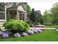 Front of house bedding. - Home and Garden Design Ideas