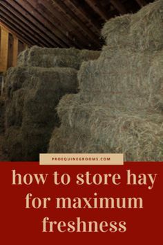 Pro Equine Grooms - Storing Hay http://www.proequinegrooms.com/tips/barn-management/hay-storage-basics/