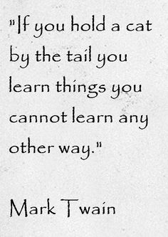 Mark Twain Quote About Cats