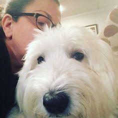 I #love to #cuddles with my #dog when Im not #traveling. #travel #travelblog #travels #traveler #whennottraveling #cutie #cutiepie #doglove #petlover #petlove #wanderlust #relaxing #relaxed