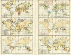 1890s Color Map Chart Mammals Distribution of the World - Antique Prints and Antique Maps from Vintage-Views.com