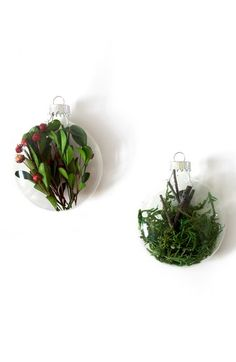 Free shipping and returns on Moss + Twig Glass Ball Ornaments (Set of 2) at Nordstrom.com. These stunning ball ornaments seal moss, twigs, berries and boxwood leaves in glass, playing with the notion of what's natural.